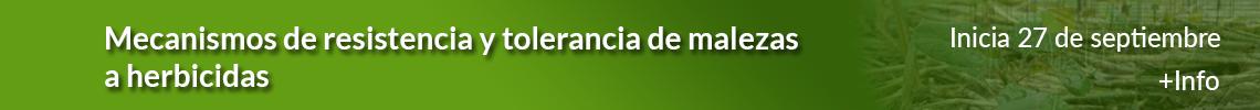 MPV_Mecanismos_Resistencia_sept_21_Tira